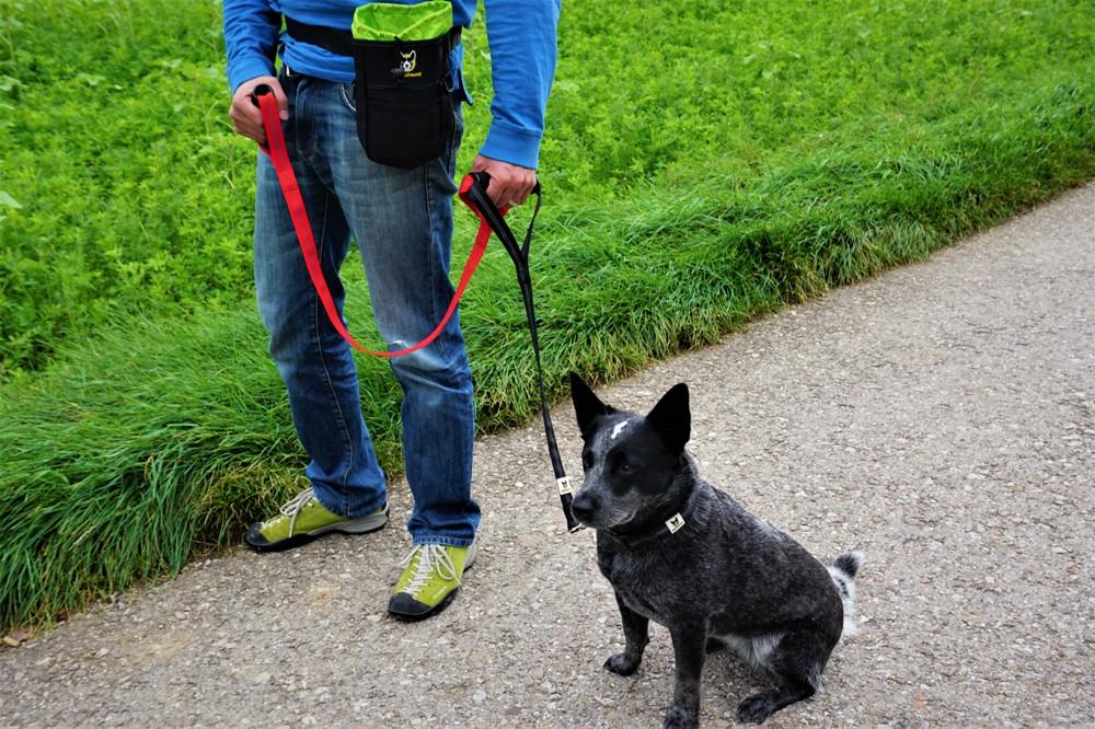 Hundefreund Doppelgriff Hundeleine
